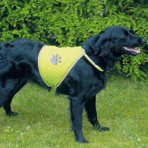 52d54d6a27d8d Looking for a reflective dog safety vest to keep you dog safe? These  reflective jackets for dogs are great for your dog.