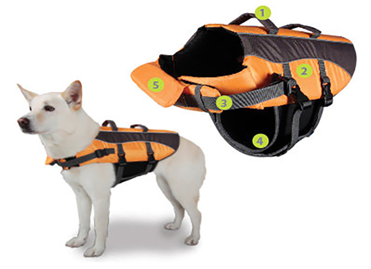 Dog Life Jacket With Best Picture Collections