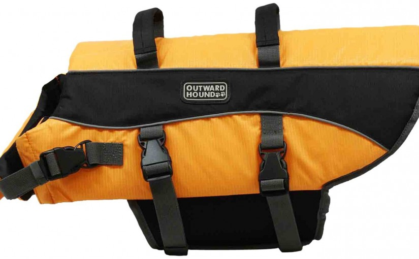 Best Dog Life Jackets For Large Dogs