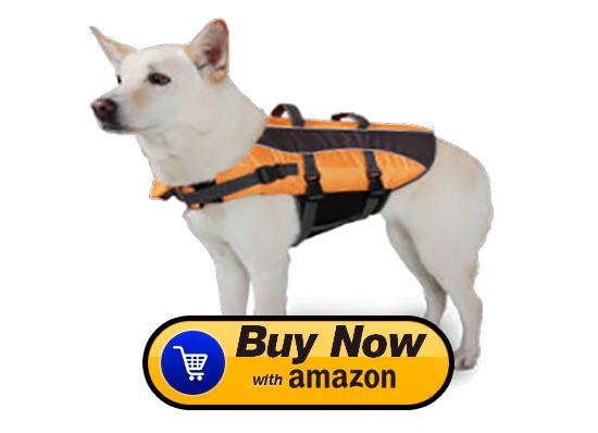 best dog life preservers