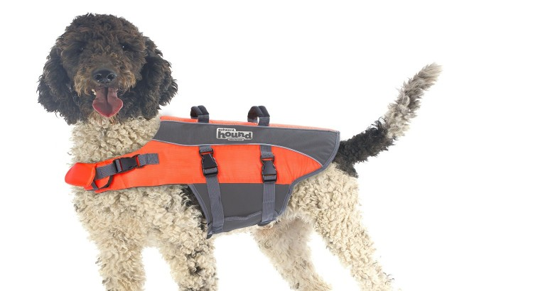 Outward Hound PupSaver Ripstop Dog Life Jacket on dog