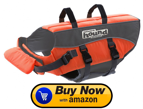 small pet life jacket