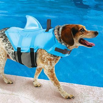 Dog Life Jacket Reviews