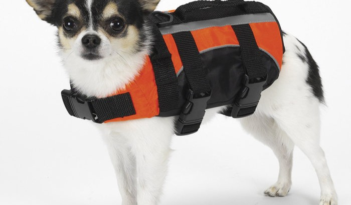 guardian-dog-life-jacket-small-dog