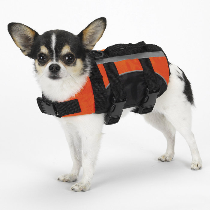 Aquatic Dog Life Jacket by Guardian