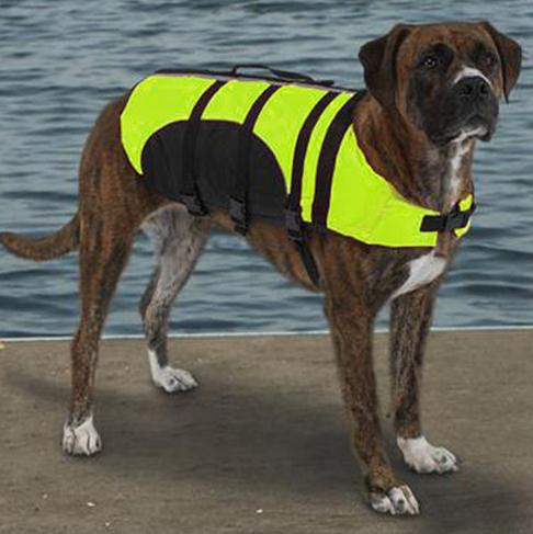 pet-life-jacket